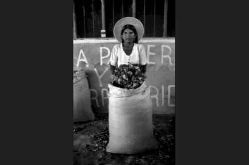 Al mercato della coca - Eterazama - Chapare