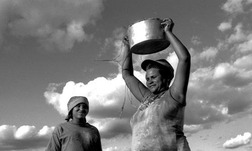 Nei campi di trigo - Pernambuco