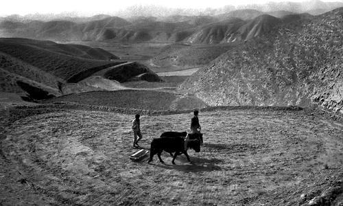 L'aratura - Gansu