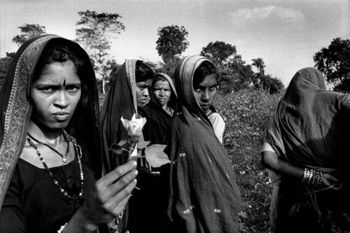 Donne braccianti nei campi di cotone presso Barwani-Maharashtra