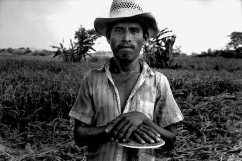 Campesino del Fronte Democratico Orientale-Huasteca
